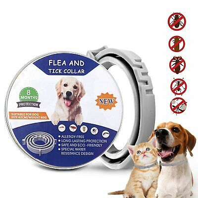 Flea and Tick Collar for Large Dog Over 18lbs 8 Month Protection Pro Guard