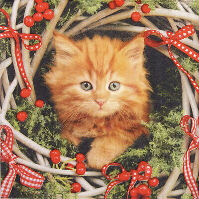 4x Paper Napkins for Party, Decoupage Craft - Christmas Cat