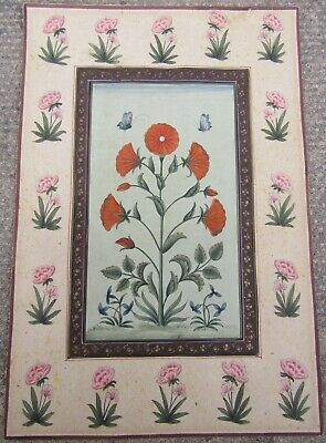 Fine Antique Mughal Indian Miniature Painting. Botanical Study