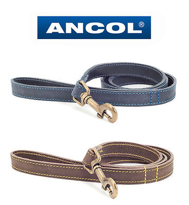 ANCOL / TIMBERWOLF LEATHER DOG LEAD (Sable/Brown or Blue)