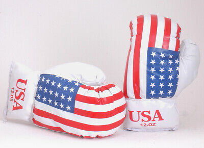 Stars And Stripes USA Flag PU Leather Boxing Gloves 12oz BX08