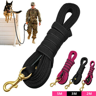 Long Dog & Horse Training Lunge Leads Webbing Leash Recall Obedience Rope 2/3/5M
