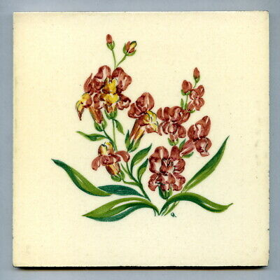 "Handpainted 6""sq tile from the ""Cultivated Flowers"" series by Packard & Ord 1952"