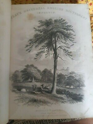 1860s Barclays Dictionary antique leatherbound book vgc illustrated engravings