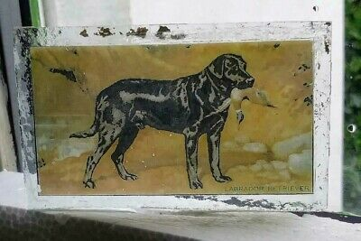 Stained Glass Labrador Retriever dog - Kiln fired fragment  pane!
