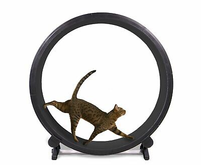 One Fast Cat - Cat Exercise Wheel
