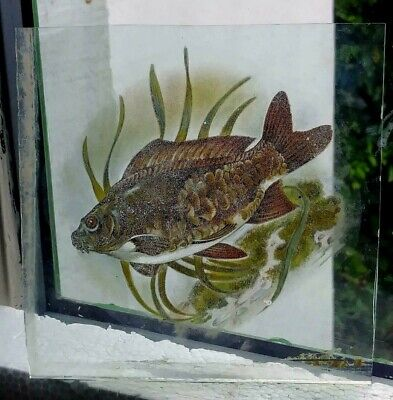 Stained Glass Mirror Carp Fish - Kiln fired hand rare fragment pane fishing!