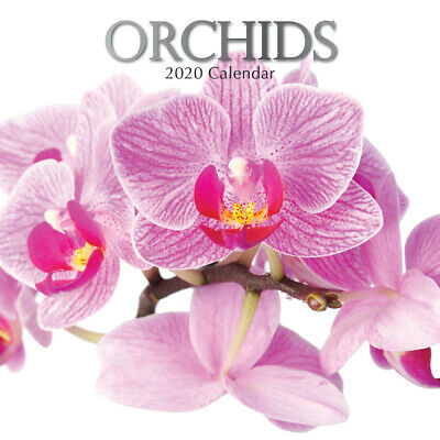 Orchids 2020 Square Wall Calendar by Gifted Stationery