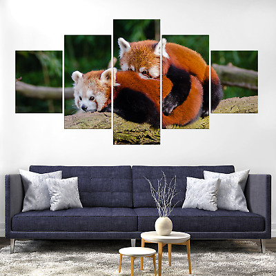 Red Panda Canvas Print Painting Framed Home Decor Wall Art Picture Poster Pic