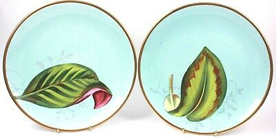 Antique Fine Porcelain Pair of Plate Hand Painted Leaves Circa 1820