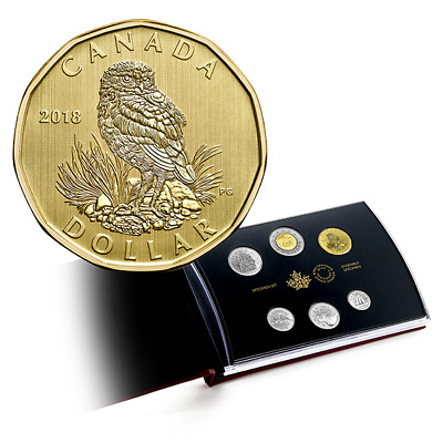 2018 Canada Burrowing Owl Specimen Loon Dollar $1 coin only - IN STOCK!!
