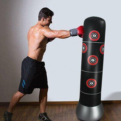 Free Standing Boxing Punch Bag Stand MMA Kick Martial Art Training 160cm & Pump