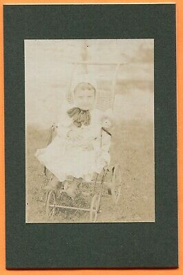 Portrait of a Little Girl in Stroller with Doll, circa 1900s