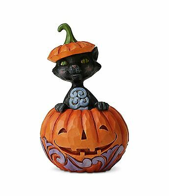 Jim Shore New 2019 HALLOWEEN MINI CAT POPPING OUT OF PUMPKIN 6004330 CAT IN PUMP