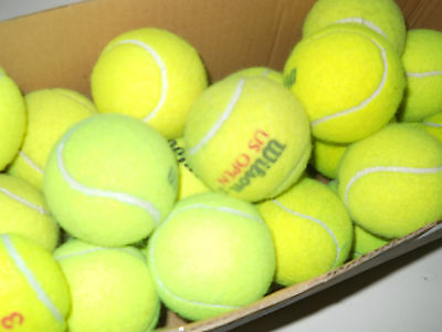 Lot of 50 used tennis balls for Dog Toys, Chairs, Walkers, etc.