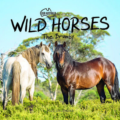 2020 Our Australia Wild Horses: The Brumby Square Wall Calendar by Paper Pocket