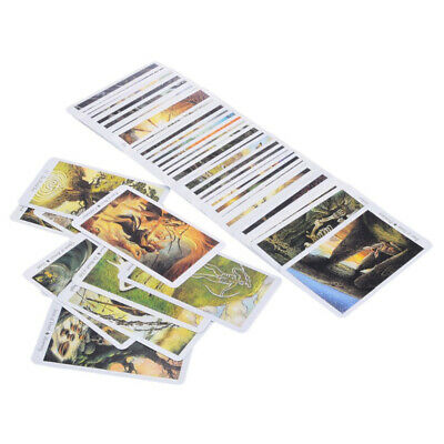 78 Pcs/ Set Card Wild Wood Tarot Cards Beginner Deck Vintage Fortune Prophecy#