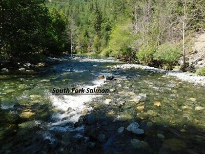 California 20 arce Mining claim South and East Fork Salmon River,Land,GREAT GOLD