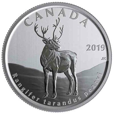 2019 Canada 50 cent Peary Caribou from Wildlife treasures set -coin in 2 x 2