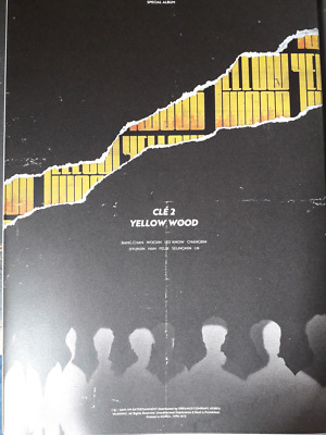 Stray Kids Cle 2: Yellow Wood Special Album Limited Edition - I.N version