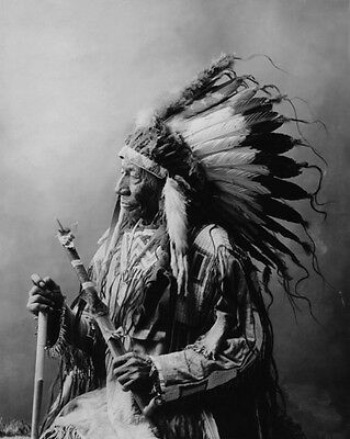 Native American Indian CHIEF BLUE HORSE Glossy 8x10 Photo Oglala Lakota Print