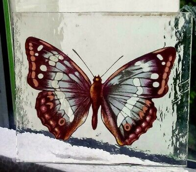 Stained Glass Purple Emperor Butterfly -  Kiln fired fragment pane piece!