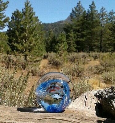 Vtg Murano Tropical Fish Paperweight Italian Art Glass Wave Controlled Bubbles