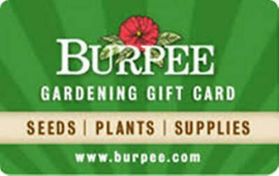 $100 Burpee Gift Card - Email Delivery