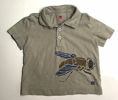 Tea Collection GUC 12-18M Boy Gray Fly Graphic Short Sleeve Jersey Polo Shirt