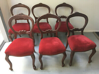 Set Of Six Antique Carved Australian Cedar Balloon Back Dining Chairs