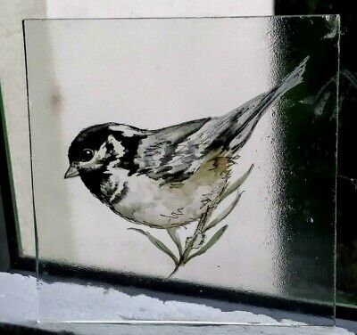 Stained Glass Coal Tit bird -  Kiln fired transfer fragment bird pane!