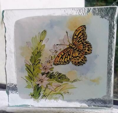 Stained Glass Butterfly -  Kiln fired transfer fragment pane