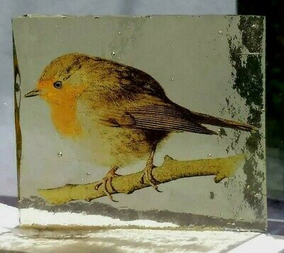 Stained Glass Robin bird -  Small Kiln fired transfer fragment bird pane!