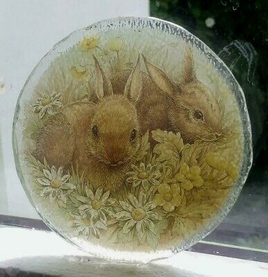 Stained Glass - Rabbits Rabbit Bunny Bunnies pane Kiln fired window roundel
