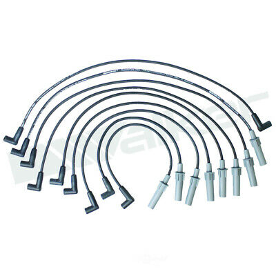 Walker Products 900-1406 Thundercore Ultra Spark Plug Wire Set