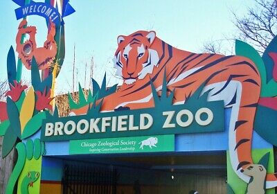 4 Brookfield Zoo Admission Tickets