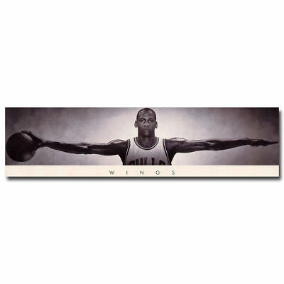 12581 Michael Jordan Wings with Basketball Poster AU
