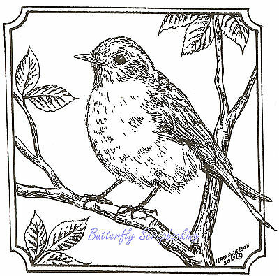 BLUEBIRD BIRD in Square Frame Wood Mounted Rubber Stamp NORTHWOODS CC10197 New