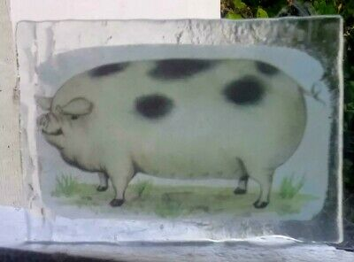 Stained Glass Pig - Kiln fired transfer painted fragment  pane!