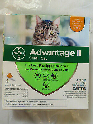 Bayer Advantage Ii Small Cat Kittens Flea Treatment Control 4 Monthly Doses