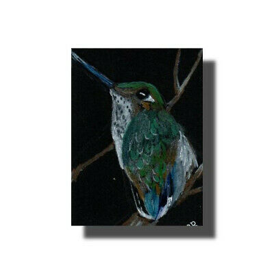ACEO Humming Bird Tiny Bird Colored Pencil Original  Buckman