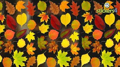 Photorealistic Autumn Leaves Shop Window Stickers - Pack 3