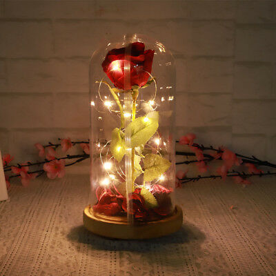 Beauty&The Beast 29cm EternalFlower Rose Glass Dome Lighted Valentine's Gift