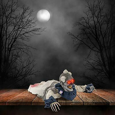 Halloween Haunters 2 Foot Animated Creepy Crawling Motion Clown Reaper Zombie Gr