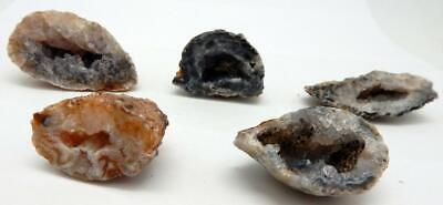 5 pc Lot of Small Oco Agate Geode Halves All Natural Crystal Druzy E1009