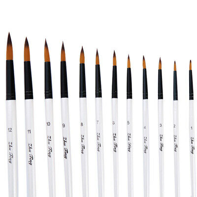 WO_ 12 Artist Paint Brushes Set Acrylic Oil Watercolour Painting Craft Art Model