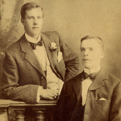1880s TWO HANDSOME YOUNG MEN CABINET CARD PHOTO VICTORIAN GAY INTEREST