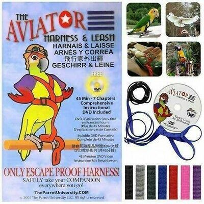 The ORIGINAL AVIATOR Bird Harness & Leash (w/ DVD)