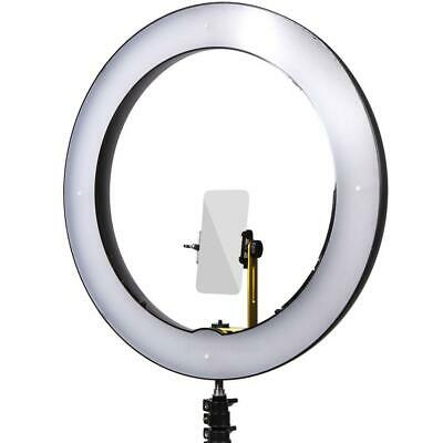 "Spectrum Aurora 19"" LED Ring Light Kit - Gold Luxe II"