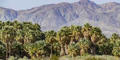 5 Acres - Coachella Valley Area - Imperial County, California